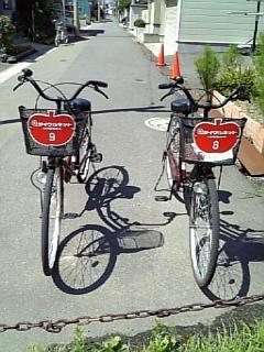サイクリングのつもりが(*_*)