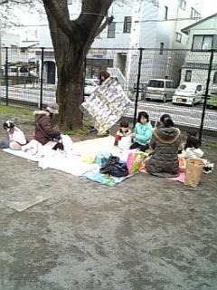 お花見&送別会(:_;)